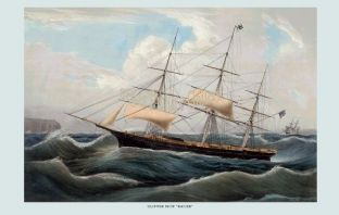 Clipper Ship - Racer